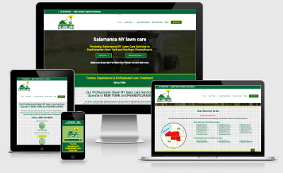 dr green lawn website